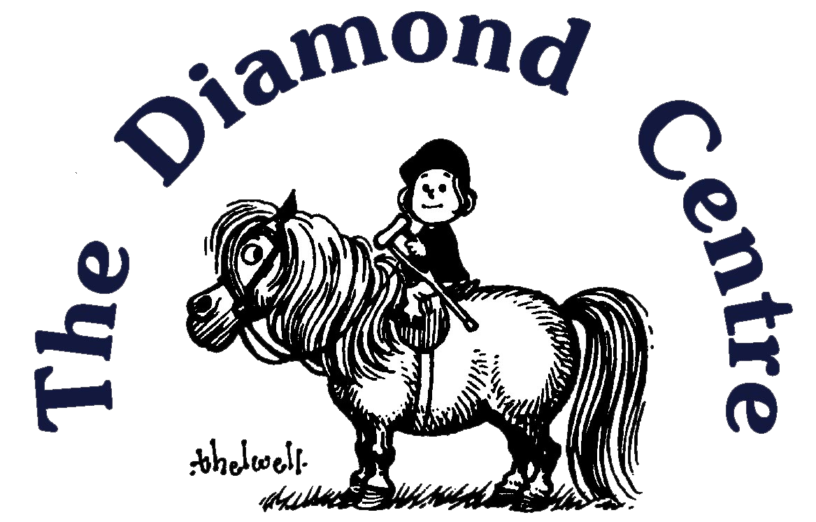 diamond centre logo